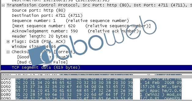 TCP segment data